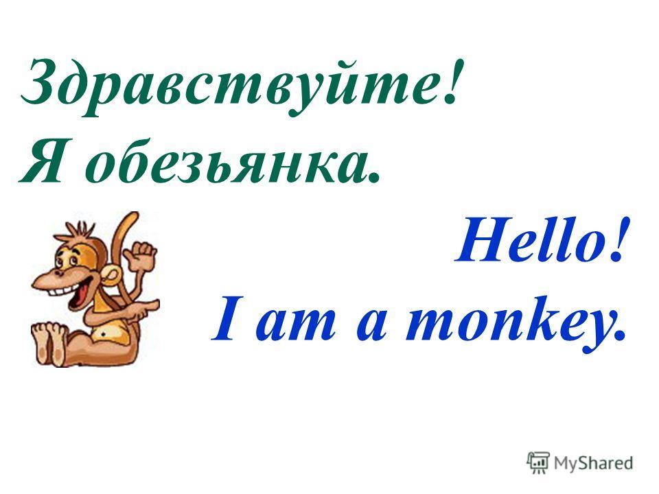 Здравствуйте! Я обезьянка. Hello! I am a monkey.
