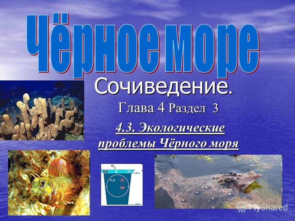 Сочиведение. Глава 4 Раздел 3 4.3. Экологические проблемы Чёрного моря 4.3. Экологические проблемы Чёрного моря