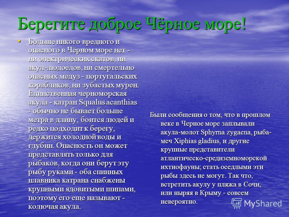 Берегите доброе Чёрное море! Больше никого вредного и опасного в Чёрном море нет - ни электрических скатов, ни акул-людоедов, ни смертельно опасных медуз - португальских корабликов, ни зубастых мурен. Единственная черноморская акула - катран Squalus
