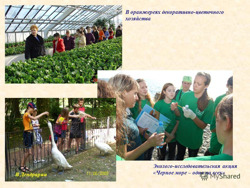 Эколого-исследовательская акция «Черное море – одно на всех» В Дендрарии В оранжереях декоративно-цветочного хозяйства