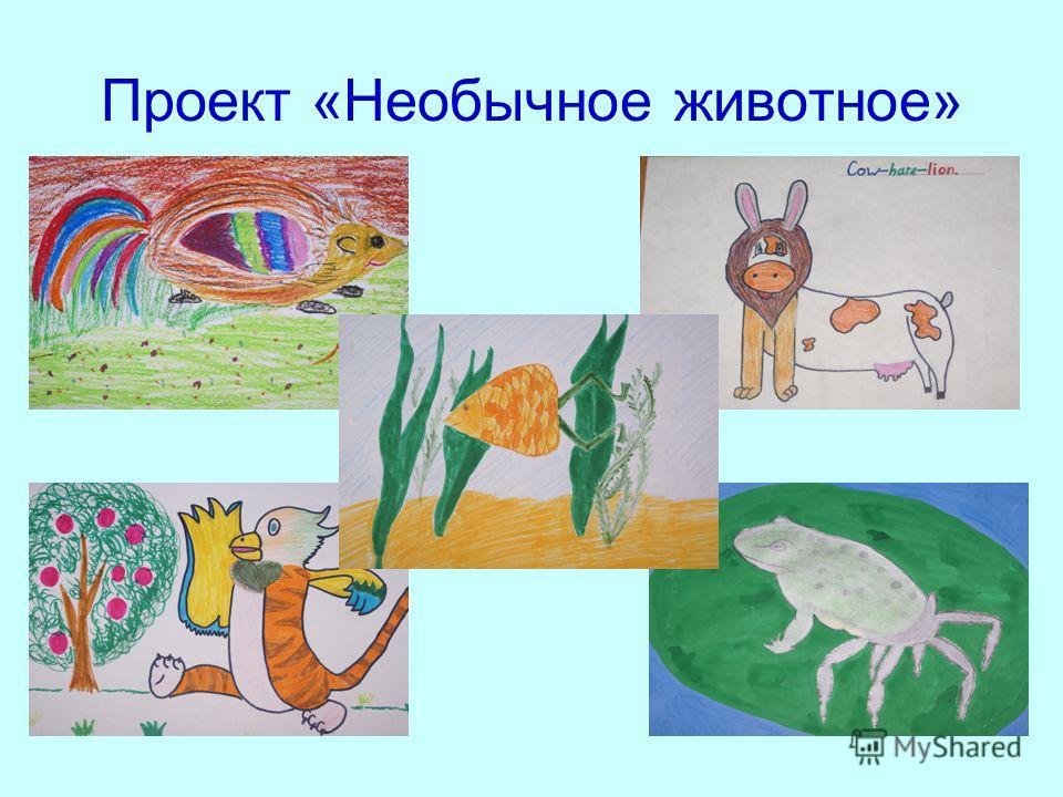 Проект «Необычное животное»