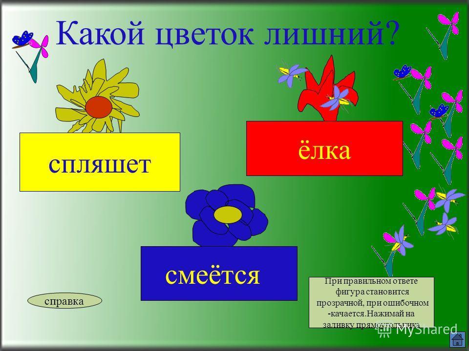 Какой цветок лишний? краска белить летит справка При правильном ответе фигура становится прозрачной, при ошибочном -качается.Найти имя существительное.