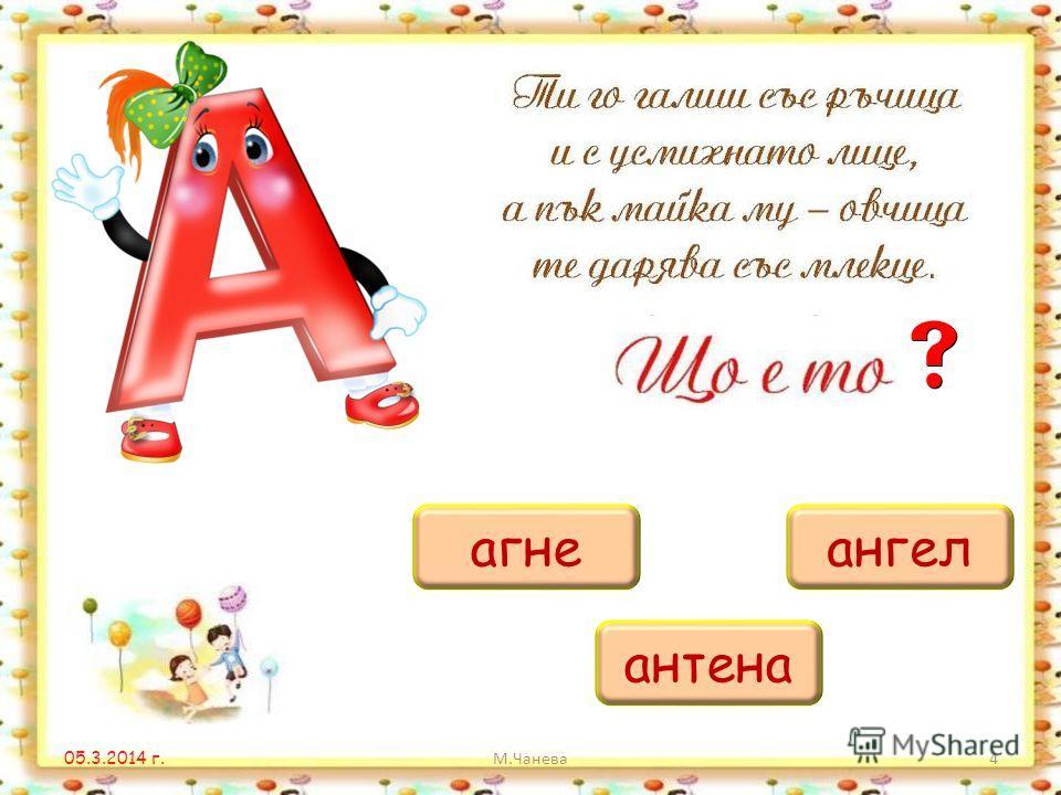 05.3.2014 г. М.Чанева3