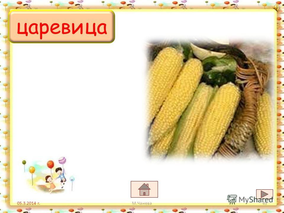 05.3.2014 г. цветяцифри царевица М.Чанева48