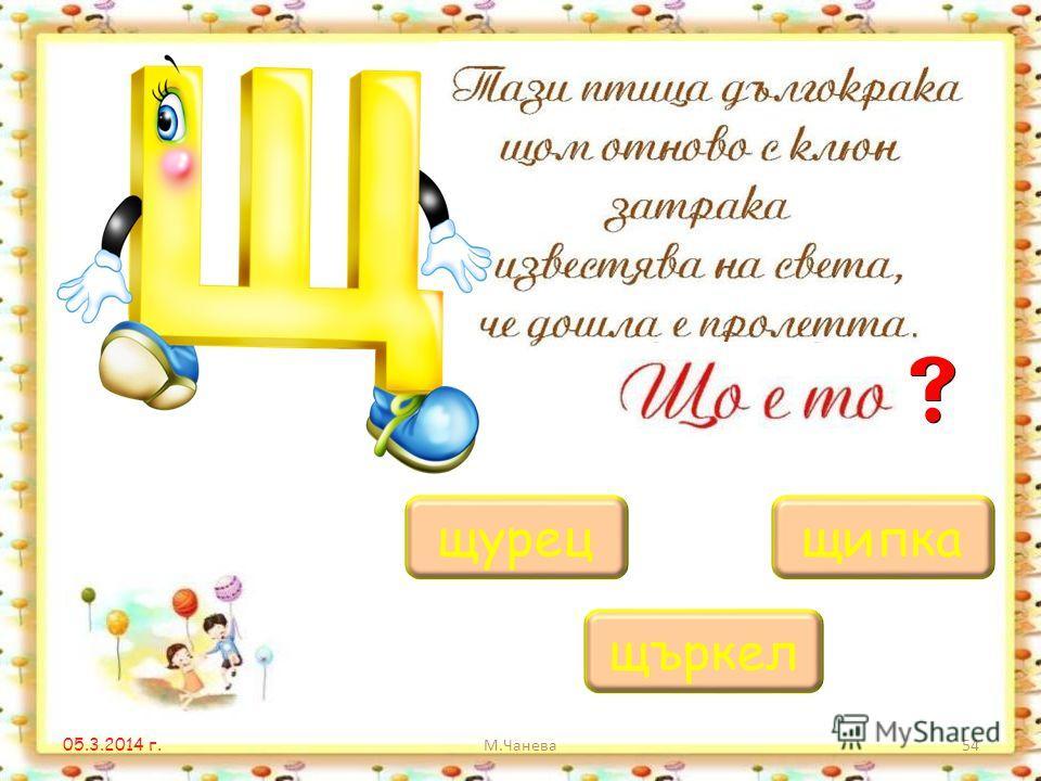 05.3.2014 г. М.Чанева53