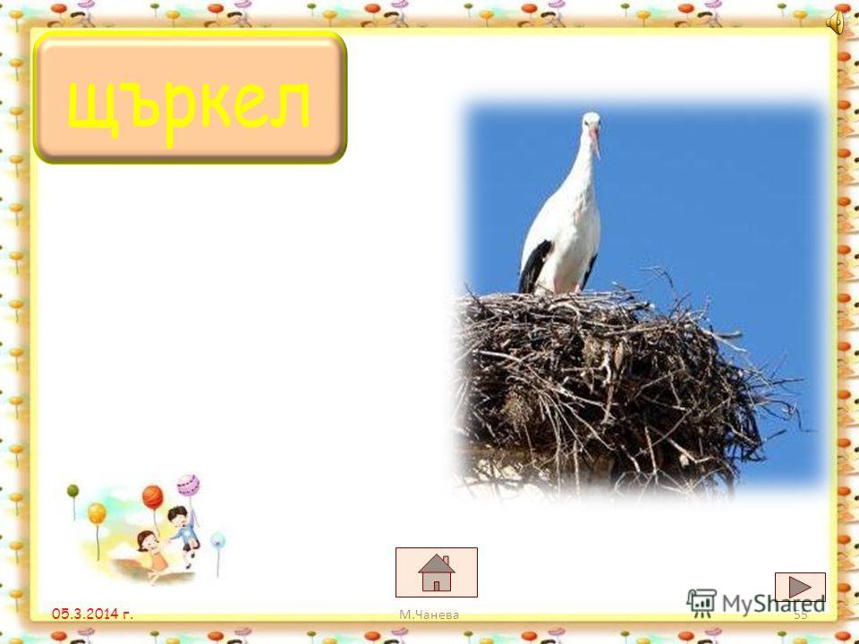 05.3.2014 г. щурецщипка щъркел М.Чанева54