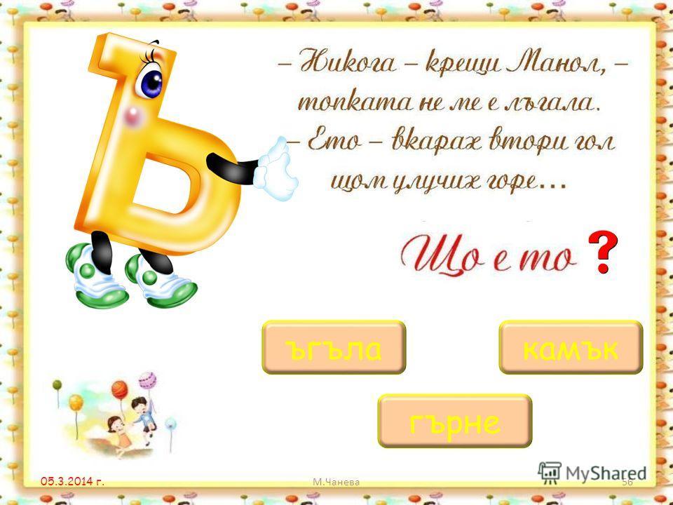 05.3.2014 г. М.Чанева55