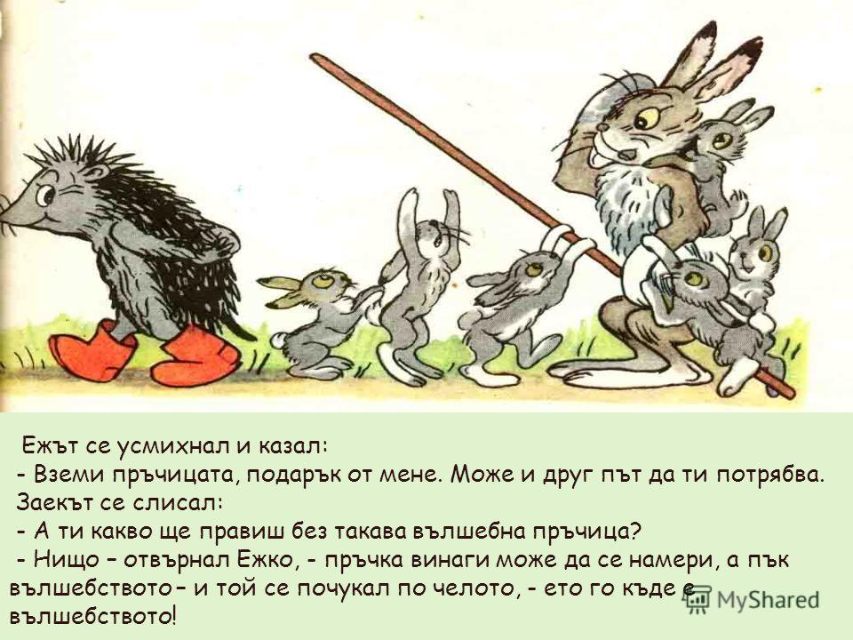 Ежът се усмихнал и казал: - Вземи пръчицата, подарък от мене. Може и друг път да ти потрябва. Заекът се слисал: - А ти какво ще правиш без такава вълшебна пръчица? - Нищо – отвърнал Ежко, - пръчка винаги може да се намери, а пък вълшебството – и той