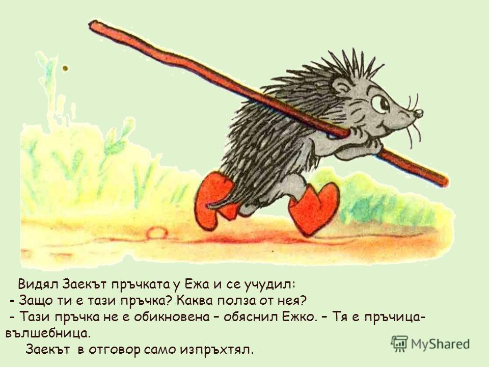 Видял Заекът пръчката у Ежа и се учудил: - Защо ти е тази пръчка? Каква полза от нея? - Тази пръчка не е обикновена – обяснил Ежко. – Тя е пръчица- вълшебница. Заекът в отговор само изпръхтял.