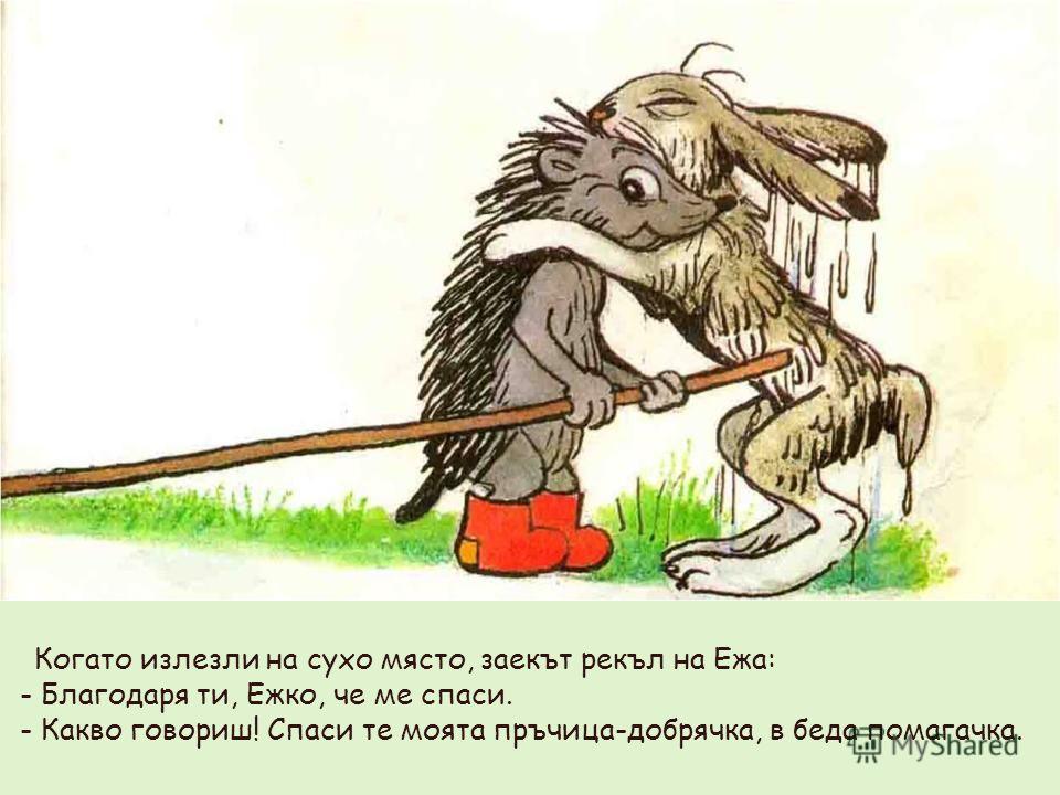Когато излезли на сухо място, заекът рекъл на Ежа: - Благодаря ти, Ежко, че ме спаси. - Какво говориш! Спаси те моята пръчица-добрячка, в беда помагачка.