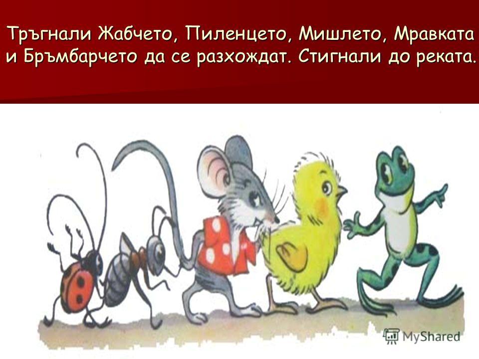 Тръгнали Жабчето, Пиленцето, Мишлето, Мравката и Бръмбарчето да се разхождат. Стигнали до реката.