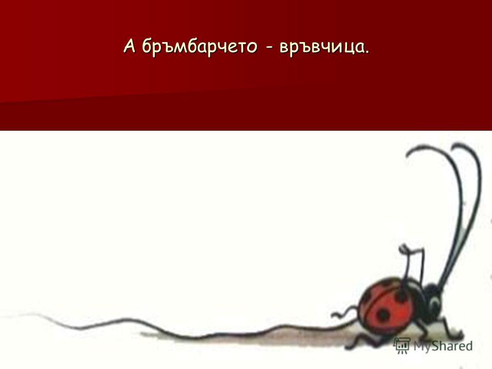 А бръмбарчето - връвчица.