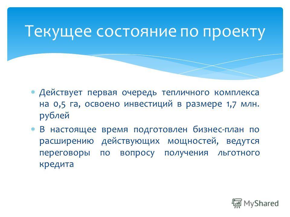 Действует первая очередь тепличного комплекса на 0,5 га, освоено инвестиций в размере 1,7 млн. рублей В настоящее время подготовлен бизнес-план по расширению действующих мощностей, ведутся переговоры по вопросу получения льготного кредита Текущее сос
