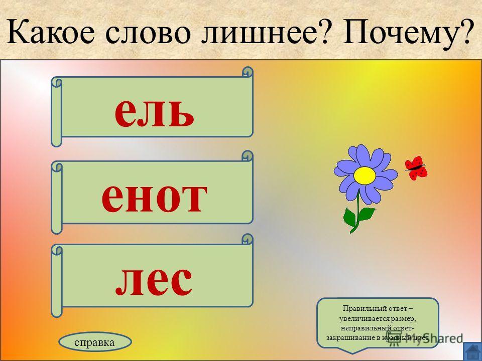 Какое слово лишнее? Почему? ель енот лес справка Правильный ответ – увеличивается размер, неправильный ответ- закрашивание в красный цвет