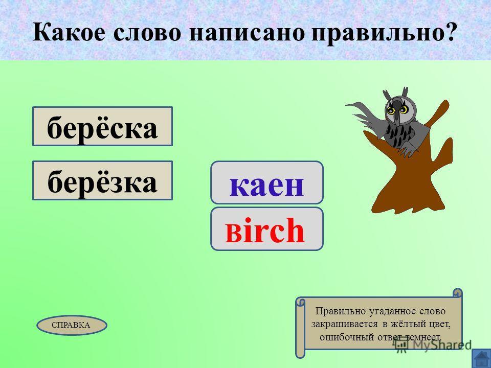Какое слово написано правильно? каен B irch берёска берёзка Какое слово написано правильно? СПРАВКА Правильно угаданное слово закрашивается в жёлтый цвет, ошибочный ответ темнеет.