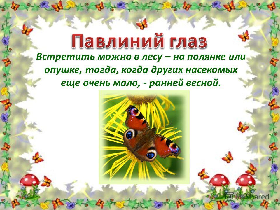 Встретить можно в лесу – на полянке или опушке, тогда, когда других насекомых еще очень мало, - ранней весной.