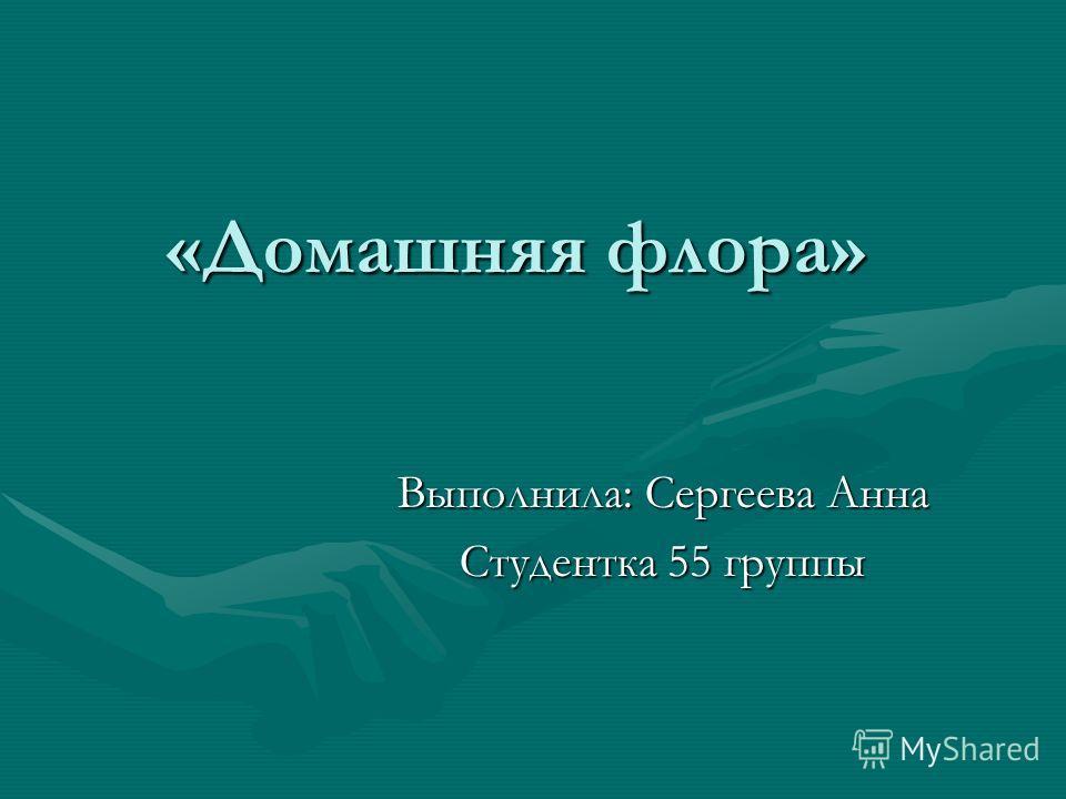 «Домашняя флора» Выполнила: Сергеева Анна Студентка 55 группы