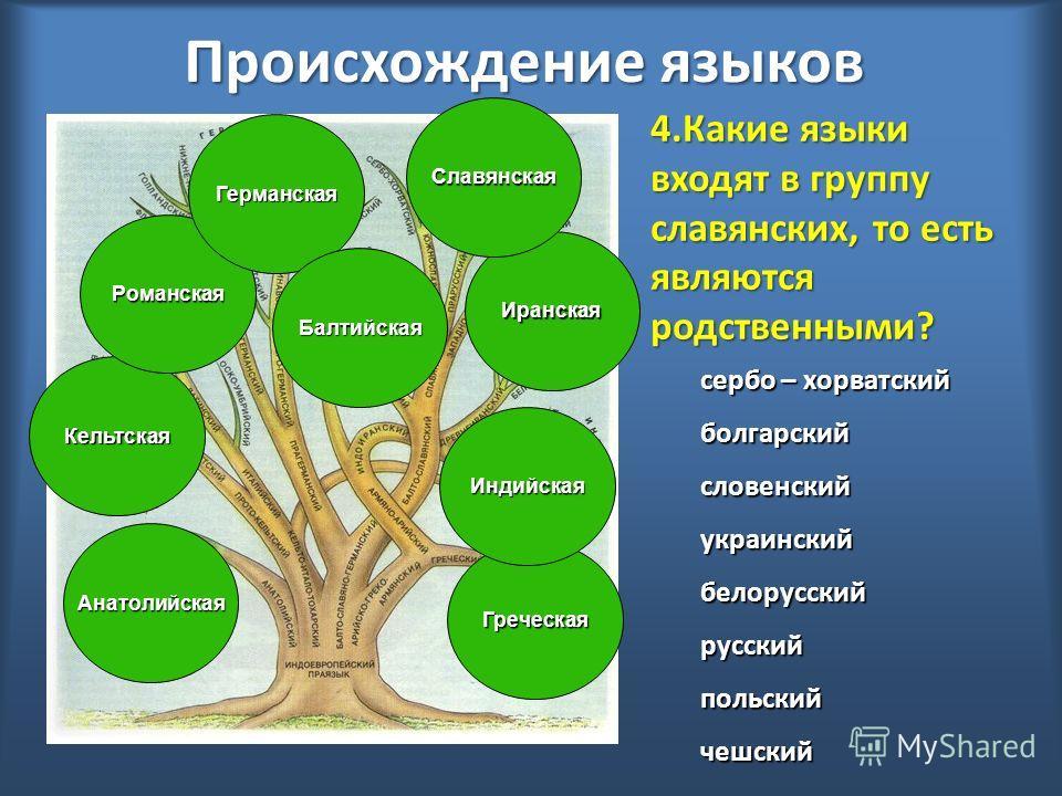 Происхождение языков Анатолийская Кельтская Романская Германская Иранская Балтийская Греческая Индийская Славянская 4.Какие языки входят в группу славянских, то есть являются родственными? сербо – хорватский болгарскийсловенскийукраинскийбелорусскийр