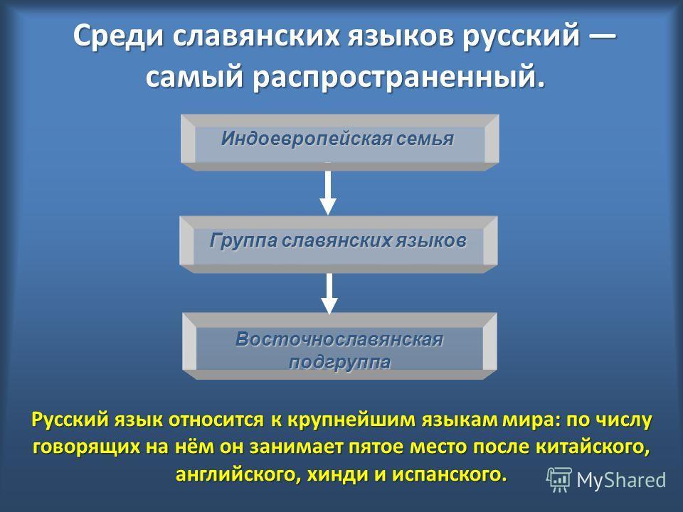 Среди славянских языков русский самый распространенный. Русский язык относится к крупнейшим языкам мира: по числу говорящих на нём он занимает пятое место после китайского, английского, хинди и испанского. Индоевропейская семья Восточнославянскаяподг