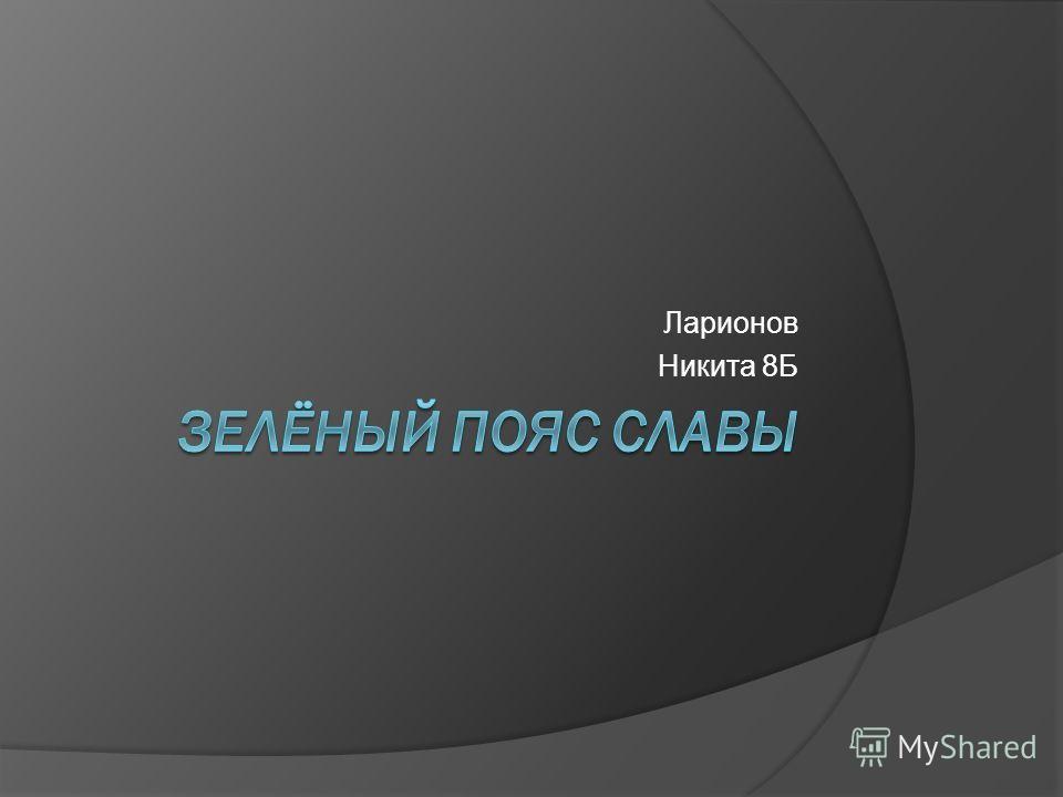 Ларионов Никита 8Б