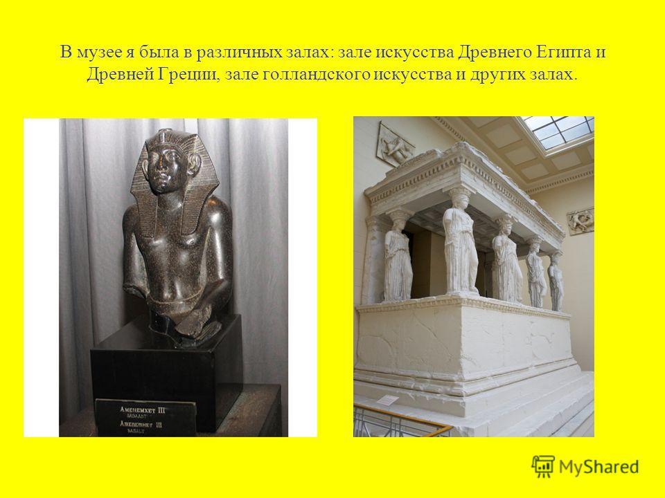 В музее я была в различных залах: зале искусства Древнего Египта и Древней Греции, зале голландского искусства и других залах.