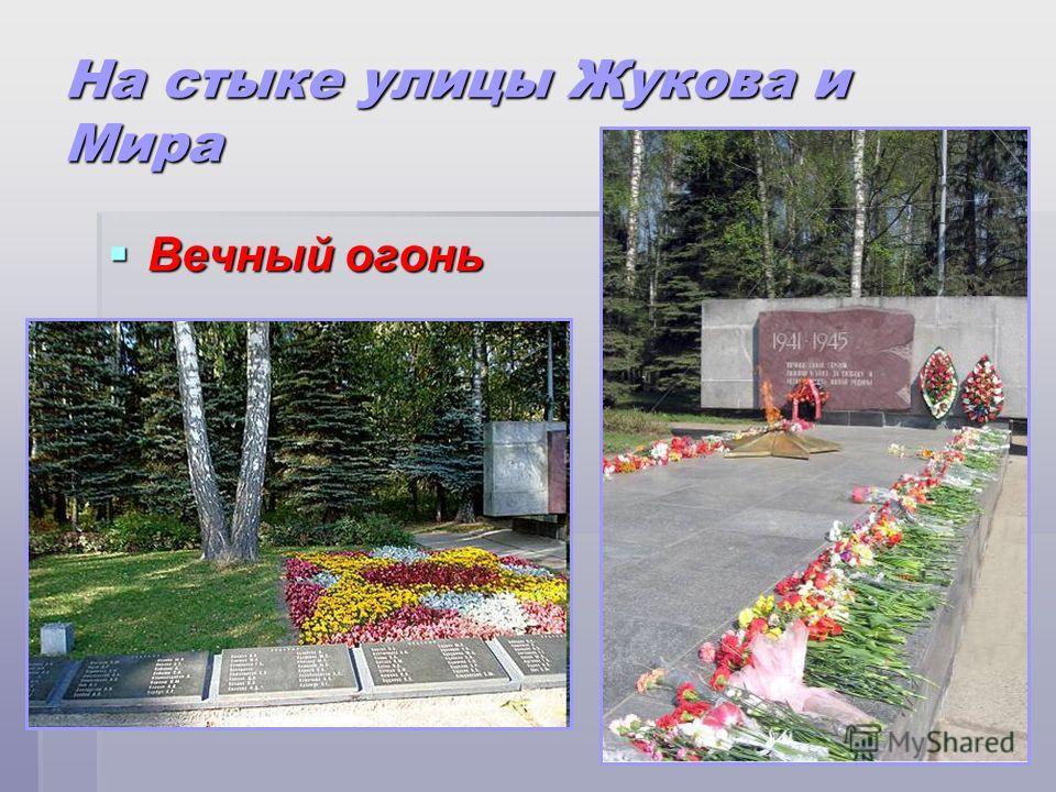 На стыке улицы Жукова и Мира Вечный огонь Вечный огонь