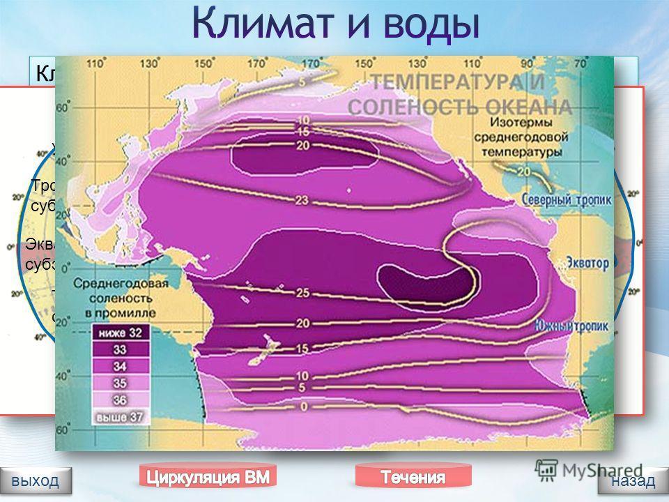 Климат океана разнообразен. Расположен во всех климатических поясах, кроме арктического. Воздух насыщен влагой. В области экватора выпадает до 2000 мм осадков. От холодного Ледовитого океана Тихий защищен сушей и подводными хребтами. Северная часть е