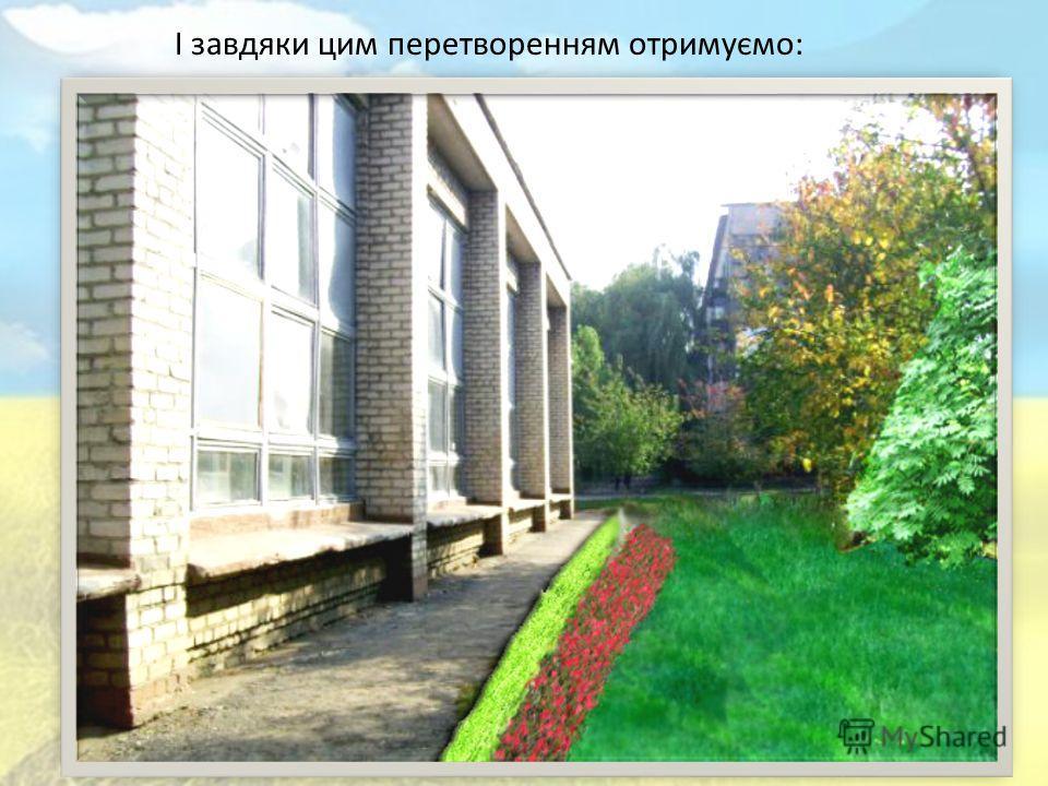 Ми вважаємо, що не вистачає для повноцінного відпочинку більше зелені, квітів, дерев з кущами. Терен Верба