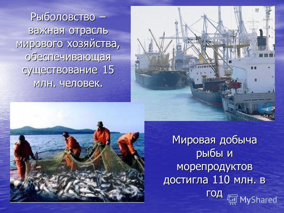 Рыболовство – важная отрасль мирового хозяйства, обеспечивающая существование 15 млн. человек. Мировая добыча рыбы и морепродуктов достигла 110 млн. в год