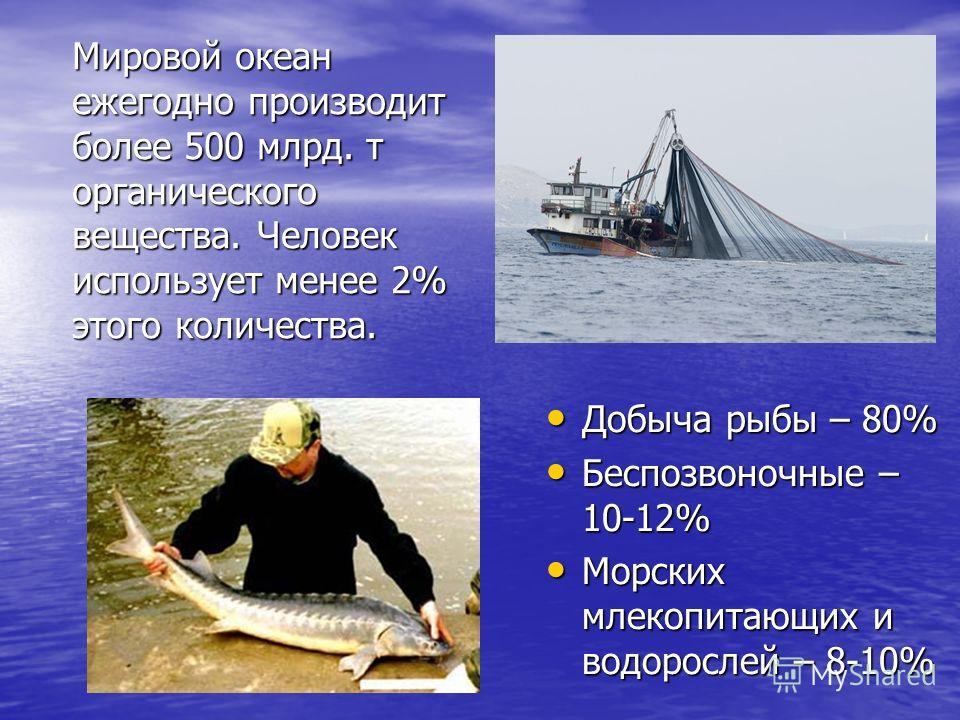 Добыча рыбы – 80% Добыча рыбы – 80% Беспозвоночные – 10-12% Беспозвоночные – 10-12% Морских млекопитающих и водорослей – 8-10% Морских млекопитающих и водорослей – 8-10% Мировой океан ежегодно производит более 500 млрд. т органического вещества. Чело