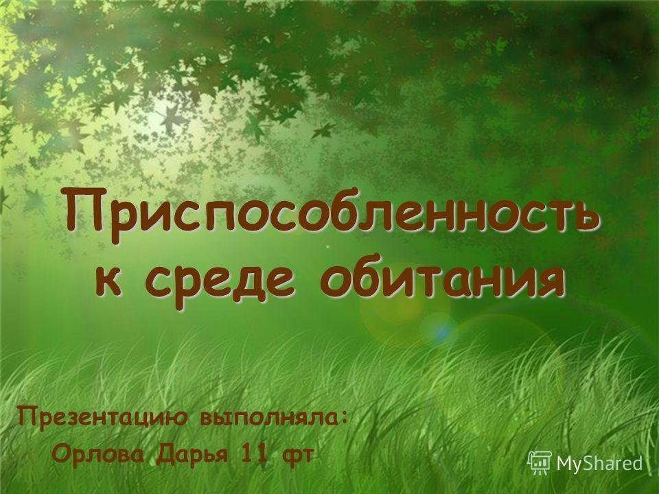 Приспособленность к среде обитания Презентацию выполняла: Орлова Дарья 11 фт