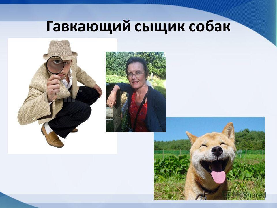 Гавкающий сыщик собак
