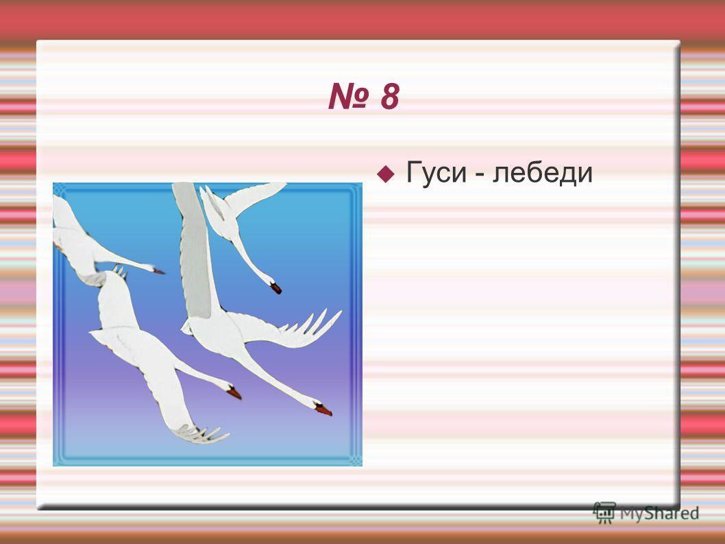 8 Гуси - лебеди