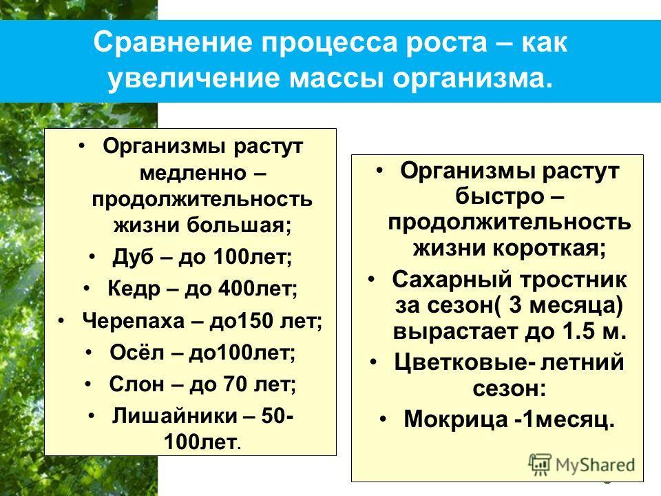 Free Powerpoint Templates Page 18 Сравнение процесса роста – как увеличение массы организма. Организмы растут медленно – продолжительность жизни большая; Дуб – до 100лет; Кедр – до 400лет; Черепаха – до150 лет; Осёл – до100лет; Слон – до 70 лет; Лиша