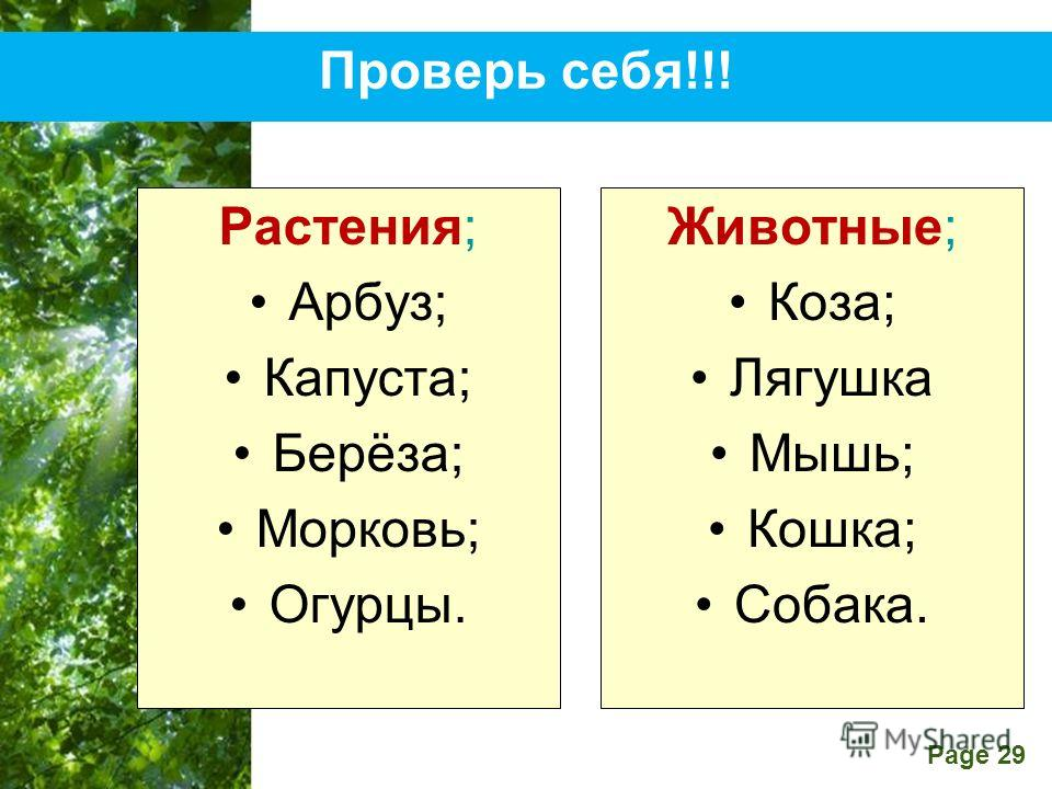 Free Powerpoint Templates Page 29 Проверь себя!!! Растения; Арбуз; Капуста; Берёза; Морковь; Огурцы. Животные; Коза; Лягушка Мышь; Кошка; Собака.