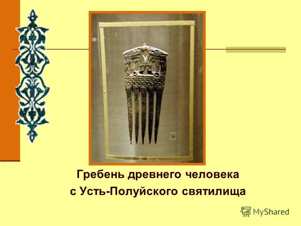 Гребень древнего человека с Усть-Полуйского святилища
