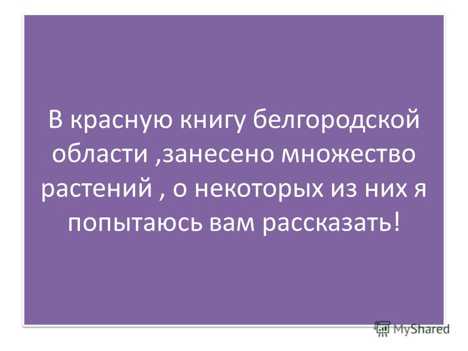 В красную книгу белгородской области,занесено множество растений, о некоторых из них я попытаюсь вам рассказать!