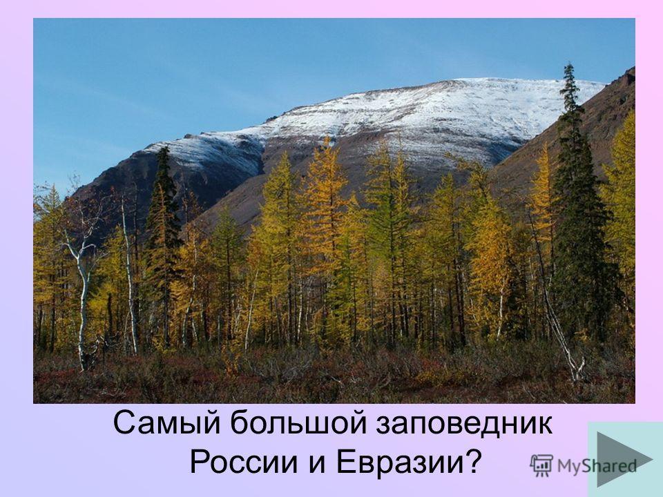 Самый большой заповедник России и Евразии?