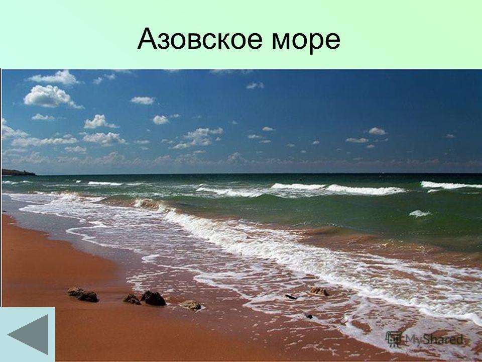 Узнай море! Средняя глубина – 7,4м Максимальная глубина – 13,5 м Солёность - 11 промилле Прозрачность – 0,5-8м Древние названия: Меотийское, Саксинское море, Балык-денгиз Впадают реки: Дон, Кубань, Ея