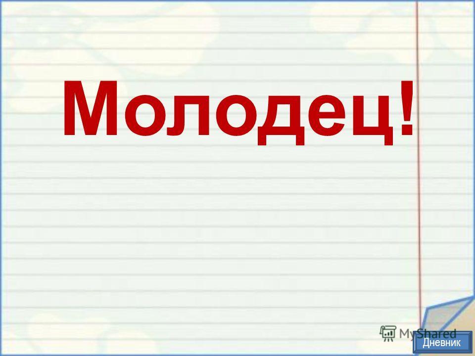 Молодец! Дневник