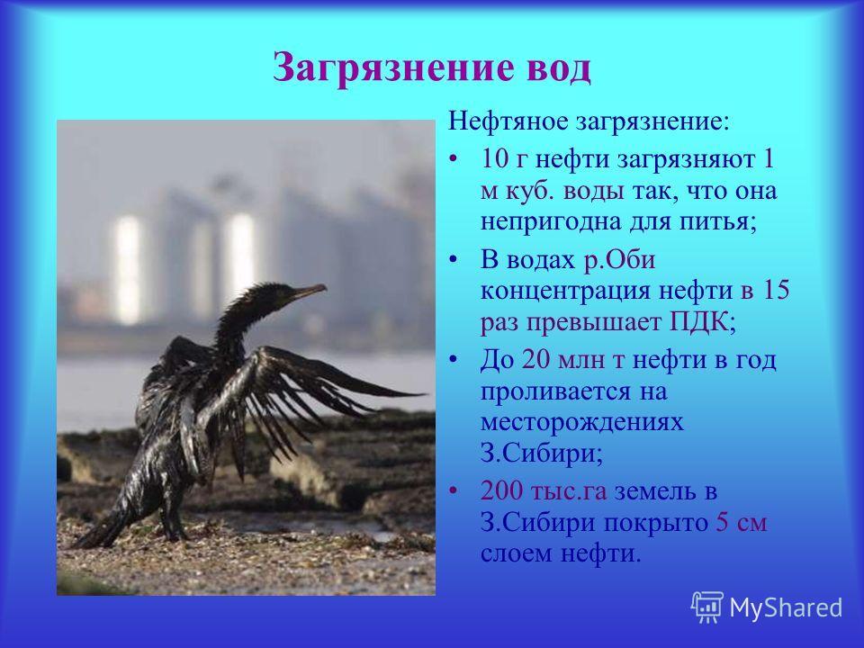Загрязнение вод Нефтяное загрязнение: 10 г нефти загрязняют 1 м куб. воды так, что она непригодна для питья; В водах р.Оби концентрация нефти в 15 раз превышает ПДК; До 20 млн т нефти в год проливается на месторождениях З.Сибири; 200 тыс.га земель в