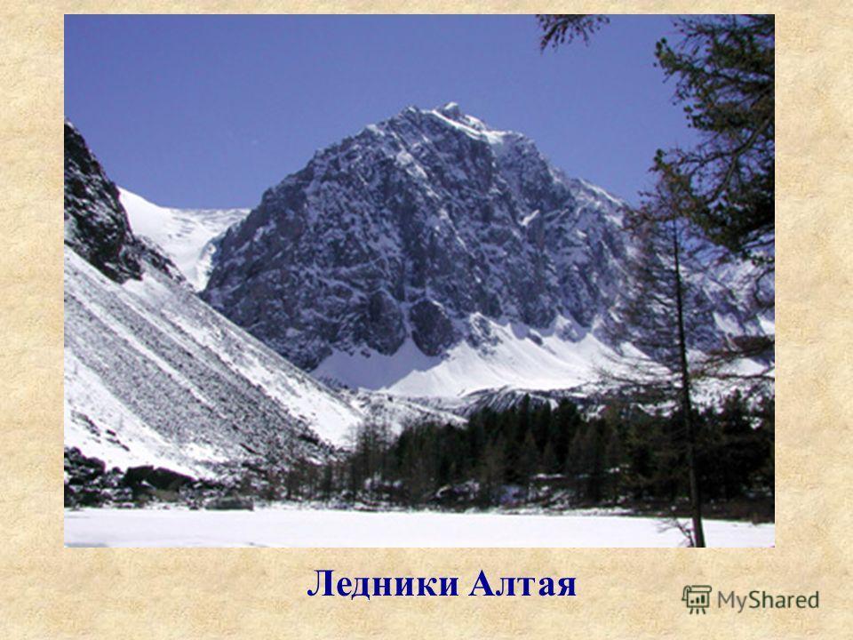 Ледники Алтая