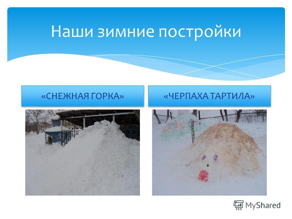 Наши зимние постройки «СНЕЖНАЯ ГОРКА» «ЧЕРПАХА ТАРТИЛА»