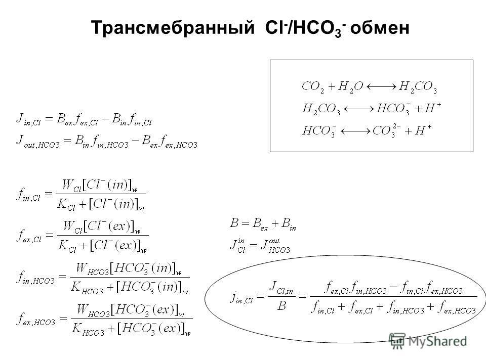 Трансмебранный Cl - /HCO 3 - обмен