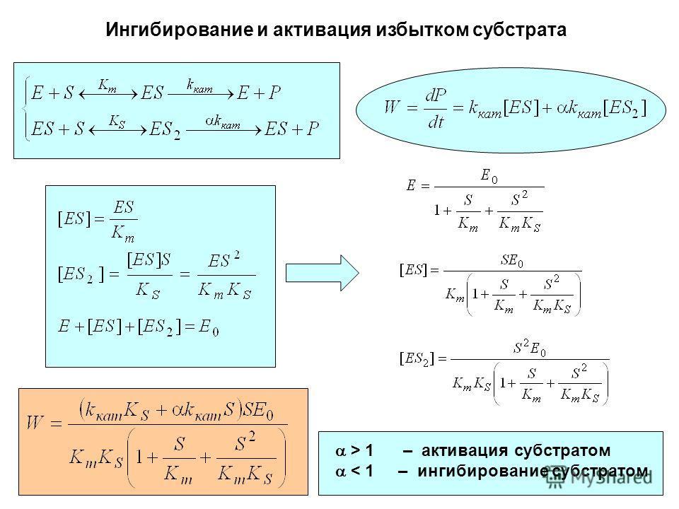 Ингибирование и активация избытком субстрата > 1 – активация субстратом < 1 – ингибирование субстратом