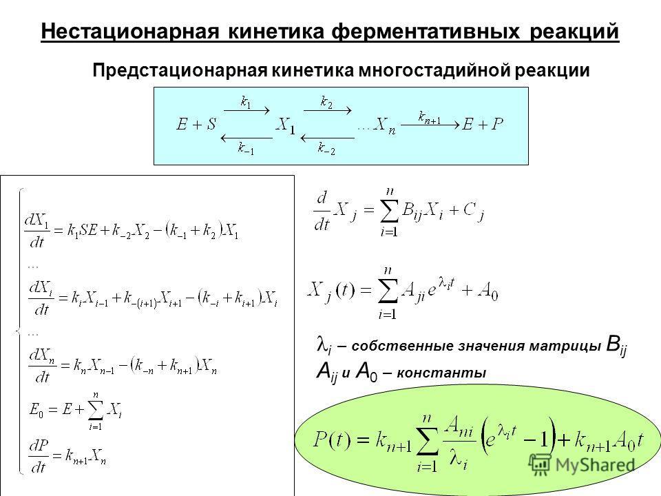 Нестационарная кинетика ферментативных реакций Предстационарная кинетика многостадийной реакции i – собственные значения матрицы B ij A ij и A 0 – константы