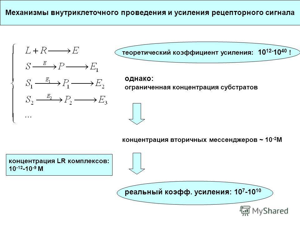 Механизмы внутриклеточного проведения и усиления рецепторного сигнала теоретический коэффициент усиления: 10 12- 10 40 ! однако: ограниченная концентрация субстратов концентрация вторичных мессенджеров ~ 10 -2 M концентрация LR комплексов: 10 -12 -10
