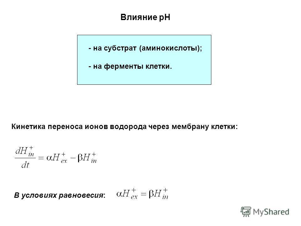 Влияние pH - на субстрат (аминокислоты); - на ферменты клетки. Кинетика переноса ионов водорода через мембрану клетки: В условиях равновесия: