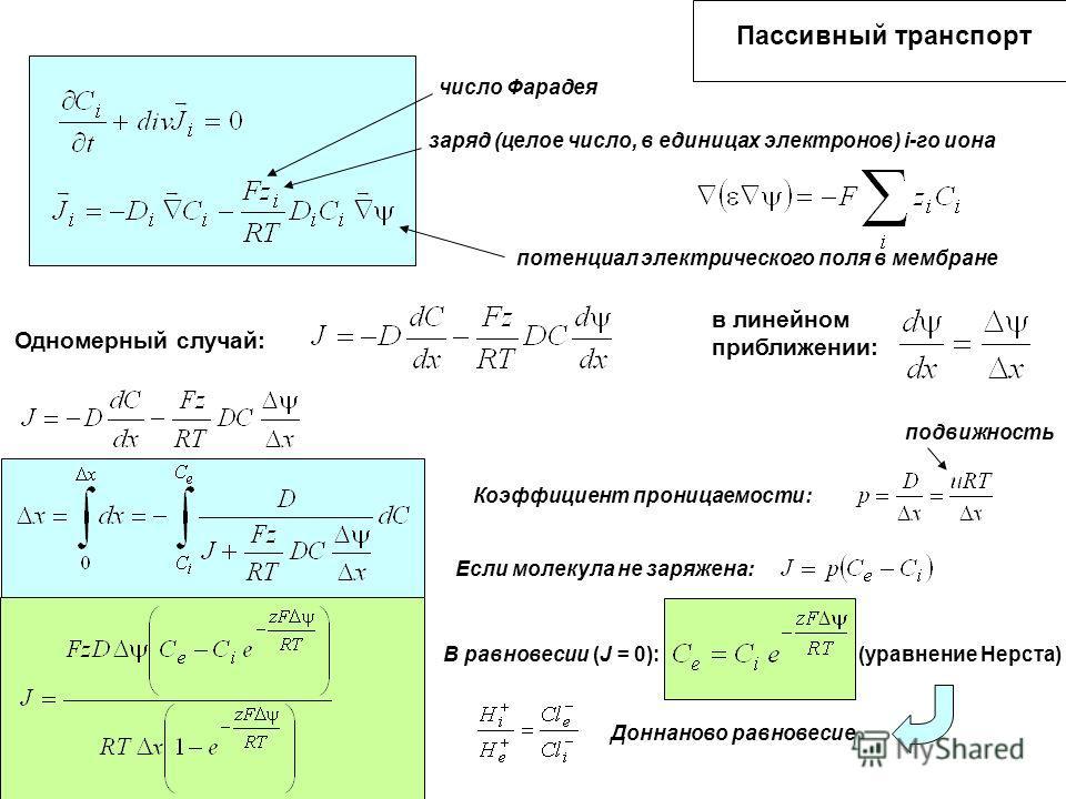 Пассивный транспорт число Фарадея заряд (целое число, в единицах электронов) i-го иона потенциал электрического поля в мембране Одномерный случай: в линейном приближении: Коэффициент проницаемости: подвижность Если молекула не заряжена: В равновесии
