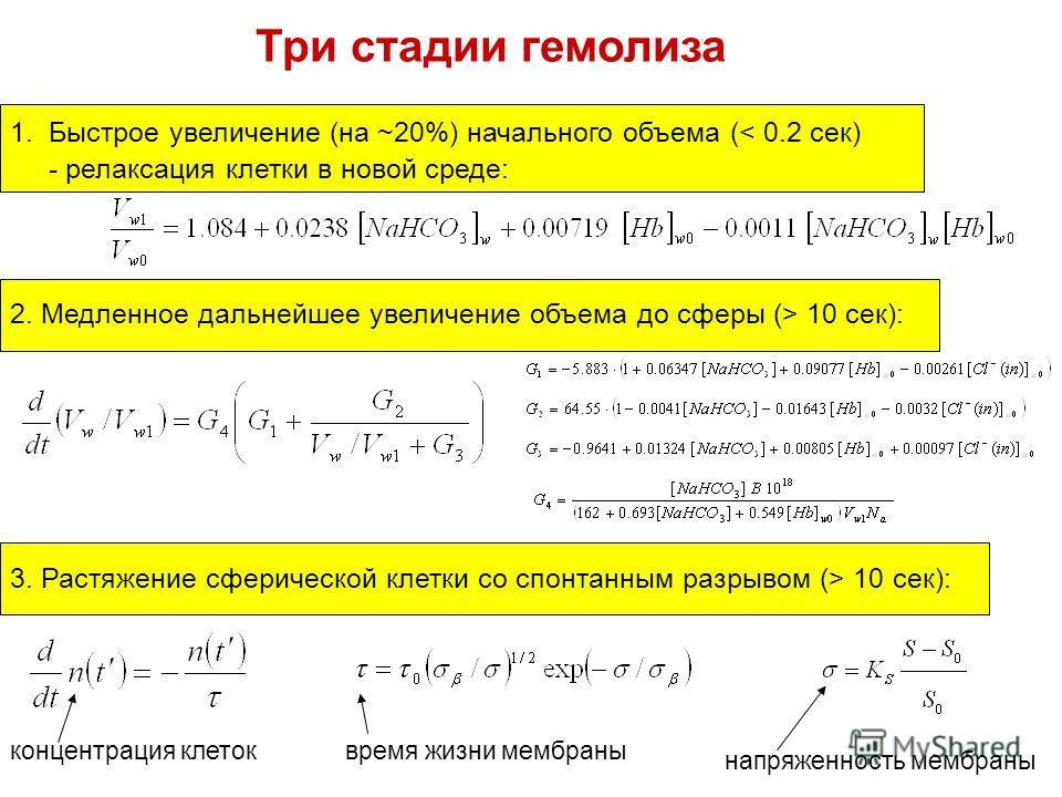 Три стадии гемолиза 1.Быстрое увеличение (на ~20%) начального объема (< 0.2 сек) - релаксация клетки в новой среде: 2. Медленное дальнейшее увеличение объема до сферы (> 10 сек): 3. Растяжение сферической клетки со спонтанным разрывом (> 10 сек): нап